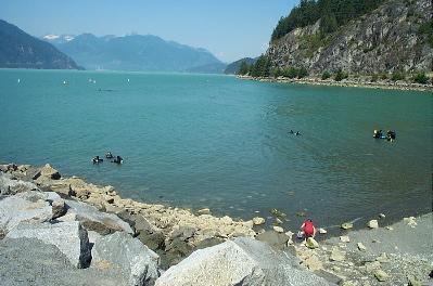 Divers BC